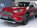 Противотуманные фары Тойота РАВ 4 / Toyota RAV 4 2019-2020